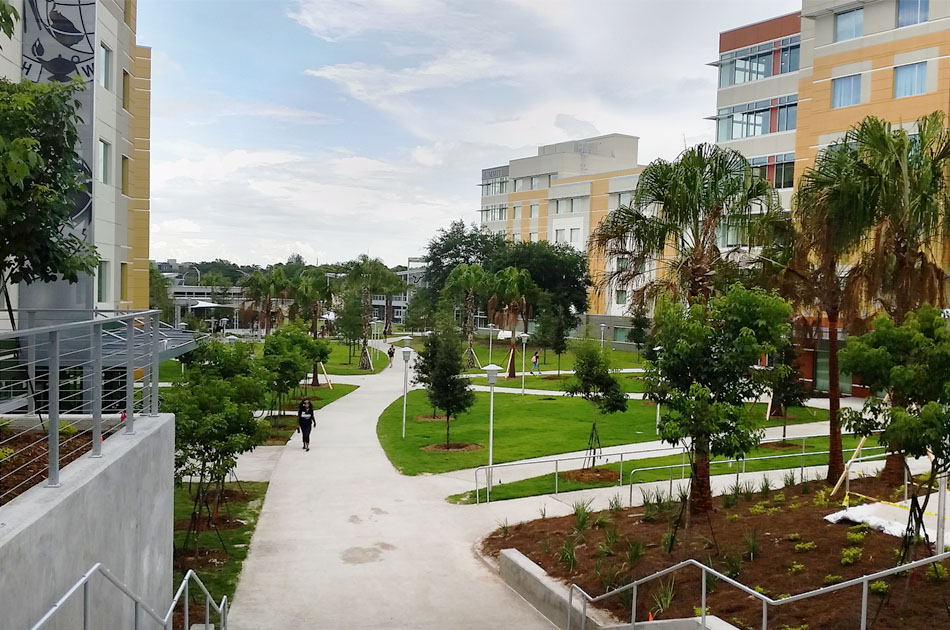 USF Residential VIllage CHW provided landscape architecture services